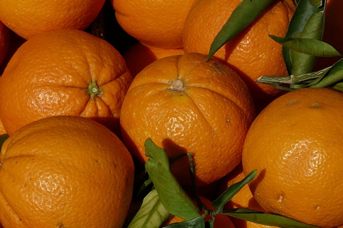 梦见煮橘子